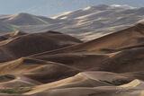 Summer Dunes print
