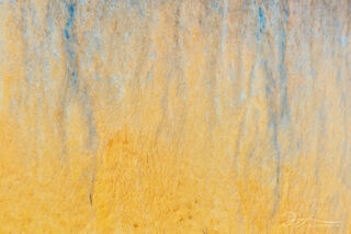 Upper Geyser Basin, Yellowstone national park, abstract photography, bacterial mats, Grand Geyser, thermophiles, hot spring, thermal feature, Wyoming