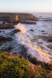 Montaña de Oro State Park, California, beach, coast, landscape, wildflowers, waves, sunset, cliffs