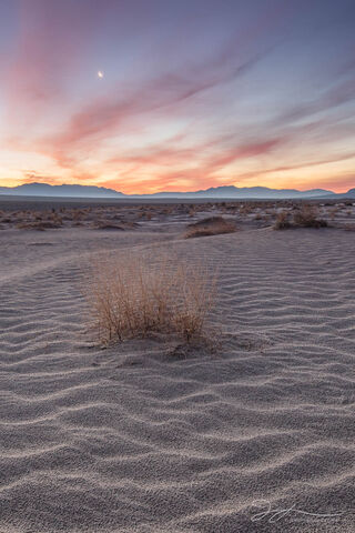 Death Valley National Park, Mojave Desert, California, texture, sunrise, ripples, sand, Mesquite Dunes, patterns, landscape, dawn, moon