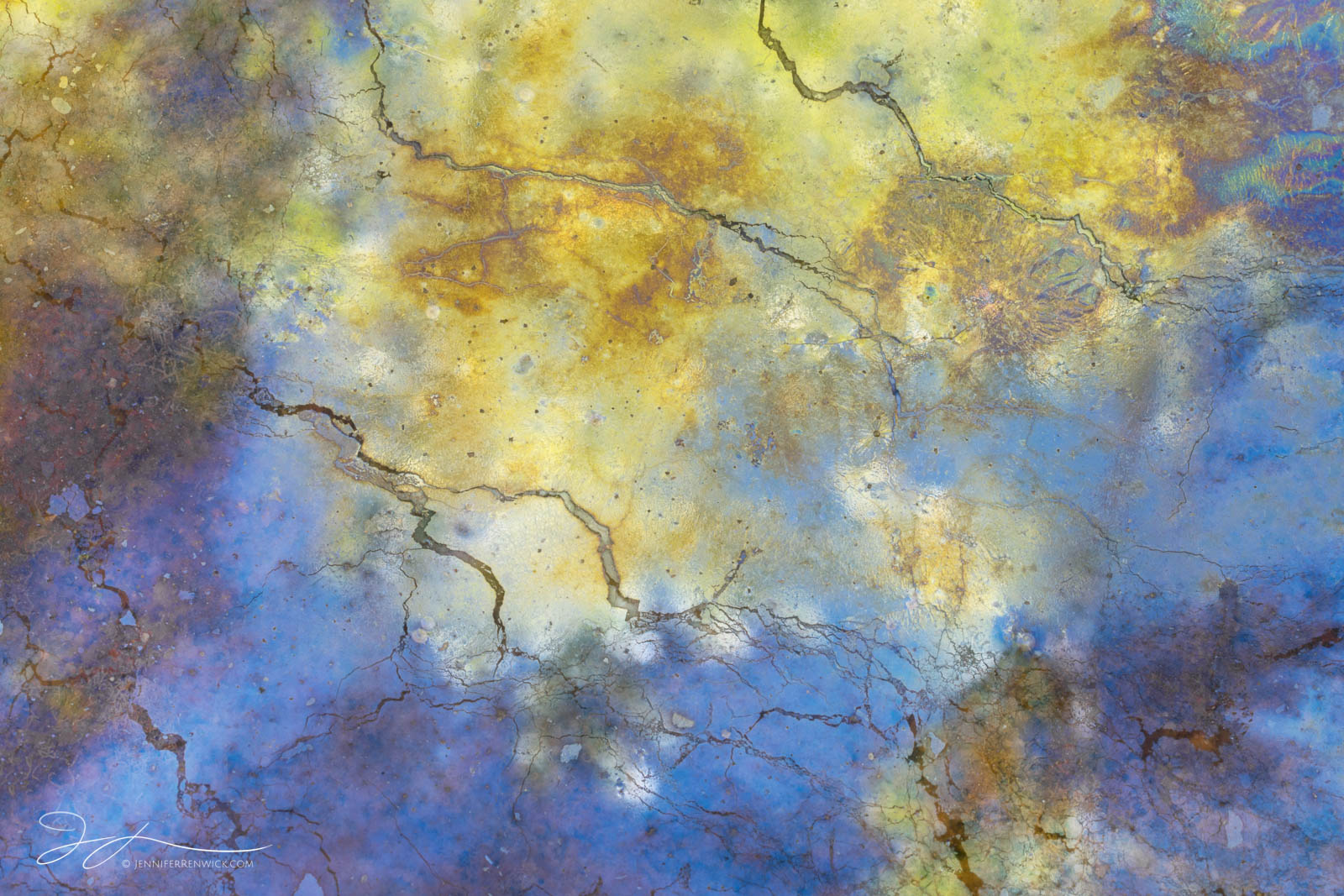 Blue and yellow colors come together to create a dreamy look in a puddle of natural oils on the canyon floor.