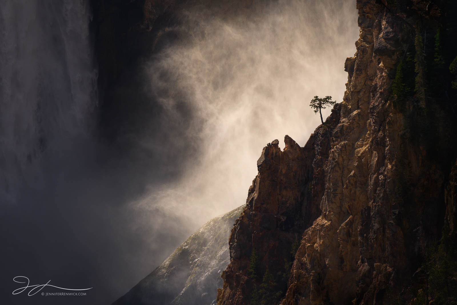 Lower Falls, Grand Canyon of the Yellowstone, Wyoming, Yellowstone national park, small scene, tree, mist, waterfall, backlit, landscape, photo