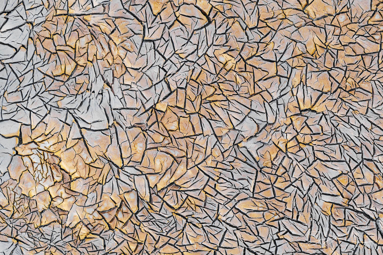 Small cracks in the mud on the desert floor create a geometric pattern.