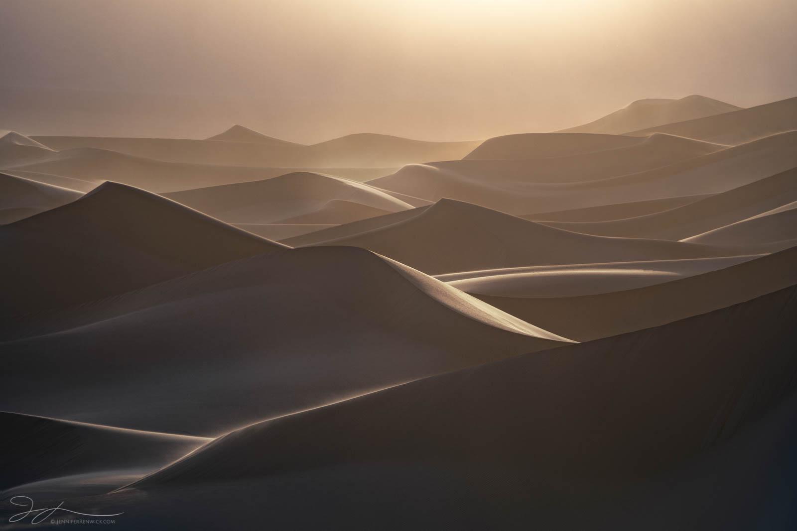 Sand dunes bask in golden light during a windstorm.