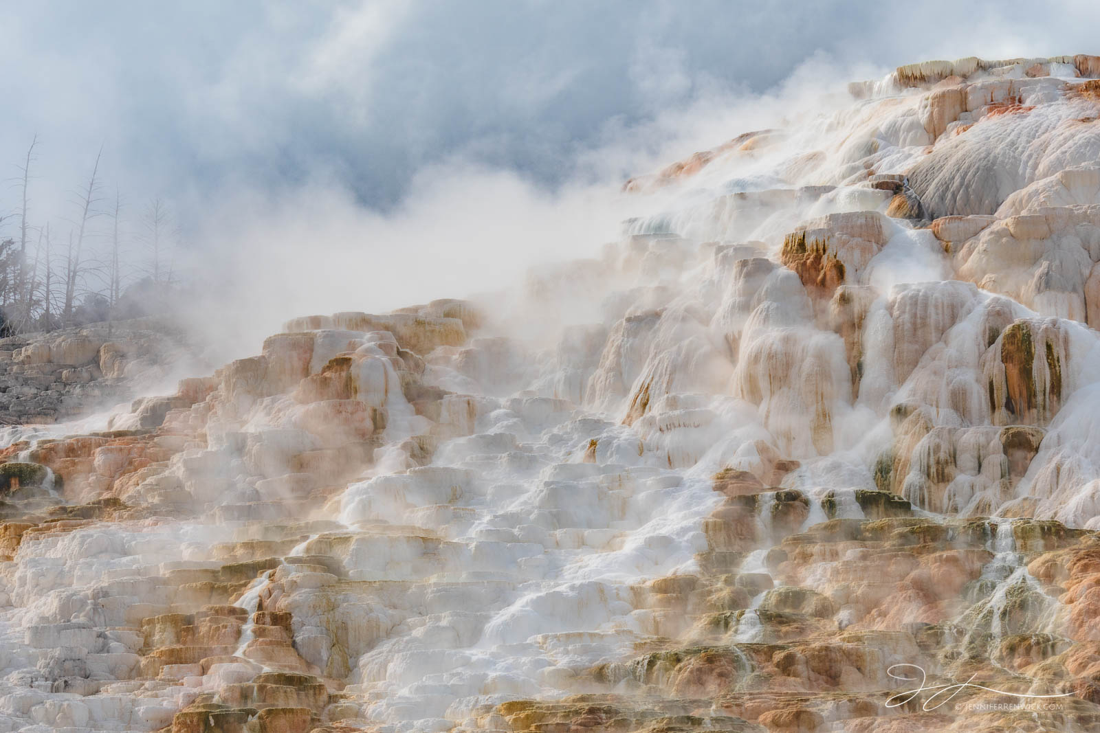 Terraces at Canary Spring steam and glow in the morning light at Mammoth Hot Springs.