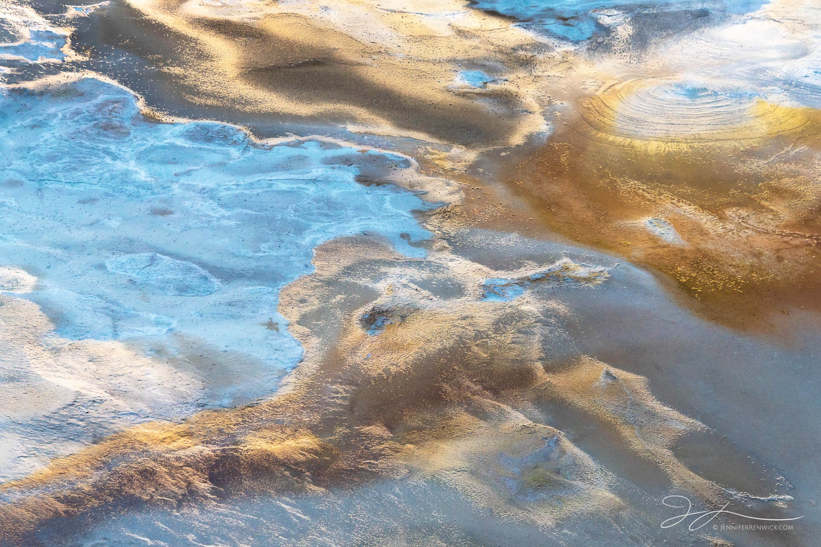 Blue and gold colors create a colorful scene in Porcelain Springs in Norris Geyser Basin.