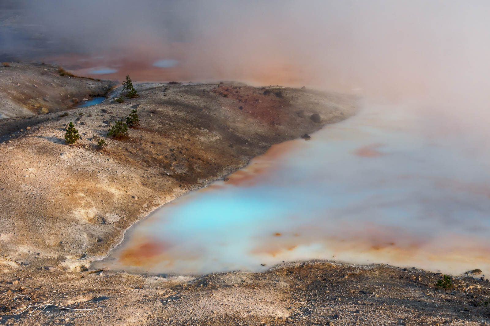 Norris Geyser Basin, Yellowstone national park, Porcelain Spring, morning, sunrise, steam, thermal feature, landscape, small scene, thermophiles, Wyoming, photo