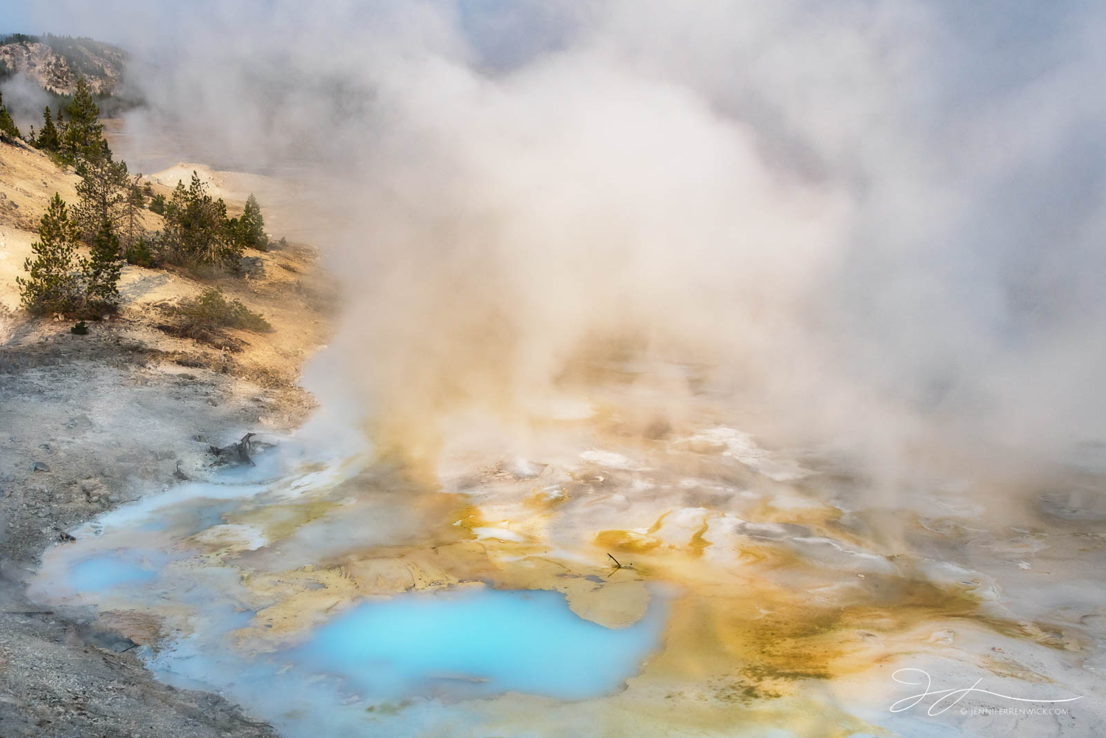 Porcelain Springs comes to life with color as the sun rises over Norris Geyser Basin.