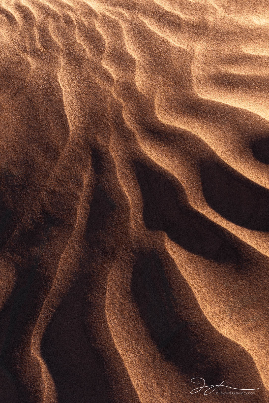 Sand ripples radiate out catching the last light before the sun disappears.