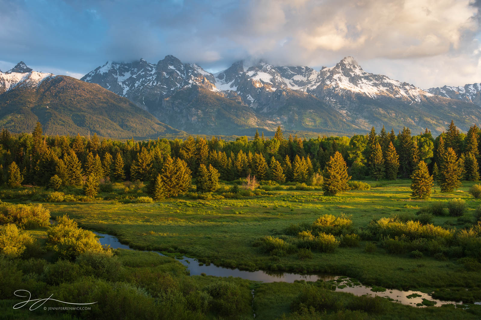 A pastoral scene unfolds during sunrise near a meadow in Grand Teton National Park.