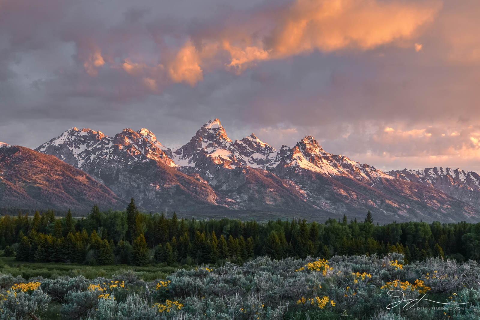 Grand Teton National Park, Wyoming, mountains, landscape, wildflowers, sunrise, clouds, Jackson Hole, Antelope Flats, Gros Ventre, photo