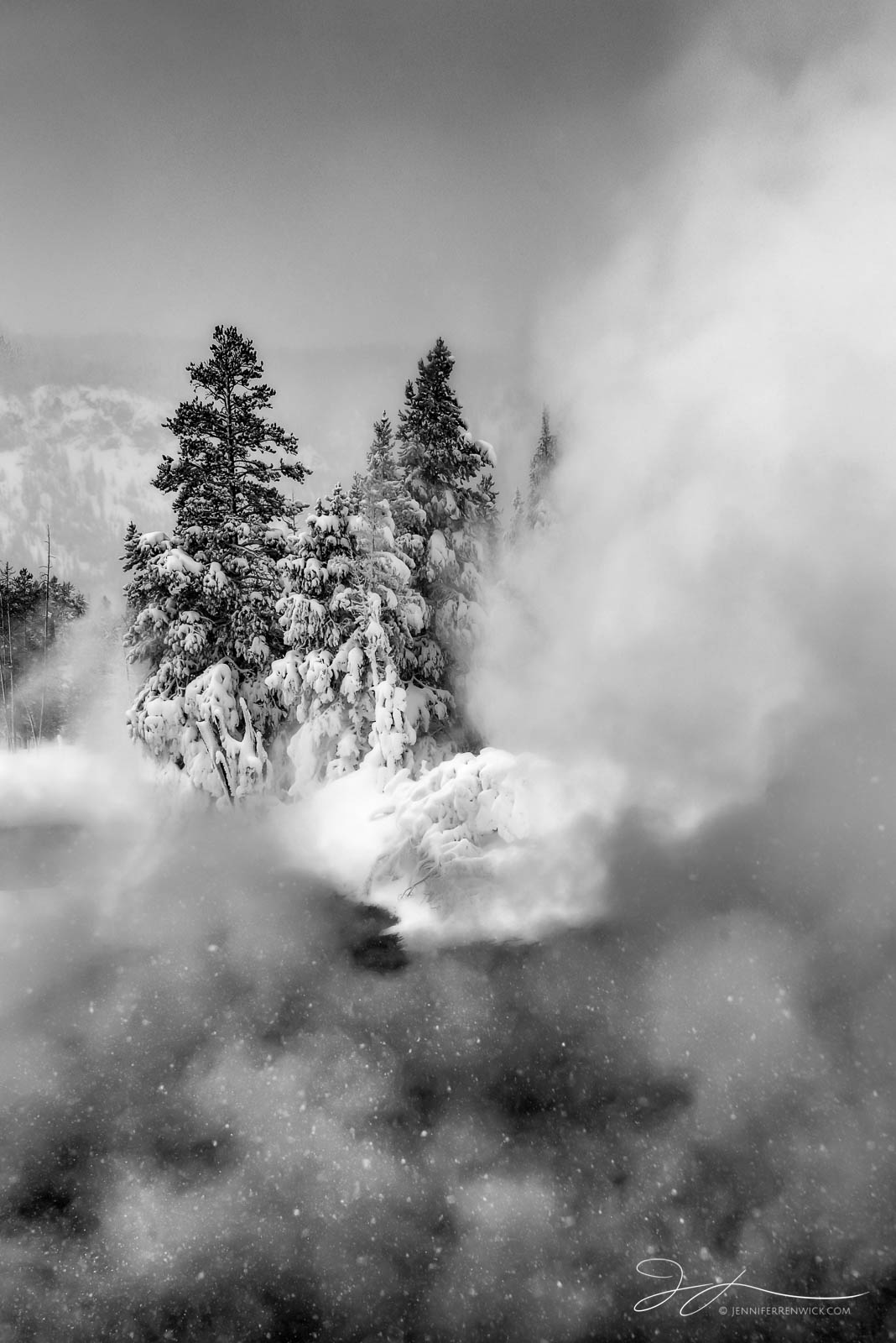 A snowstorm drops snowflakes over a thermal feature's steam in Yellowstone National Park.